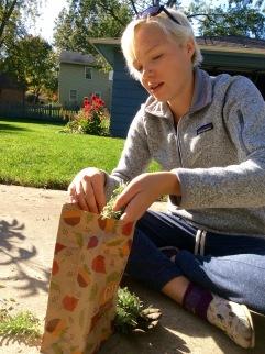 NoFarmNeeded - Putting Lavender in Bag