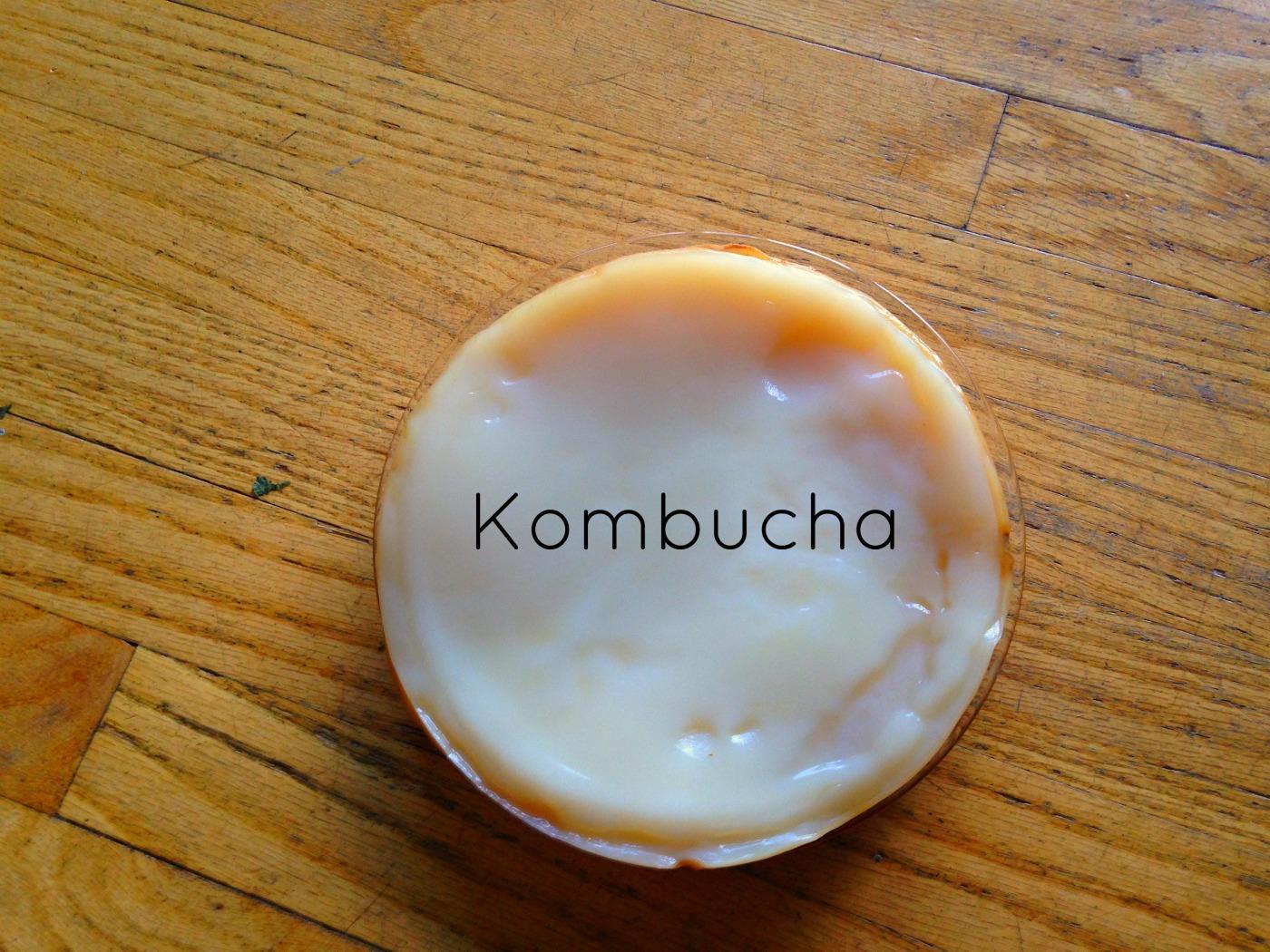 Kombucha-NoFarmNeeded