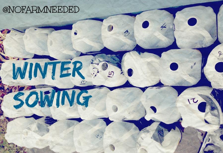 Winter Sowing @NoFarmNeeded