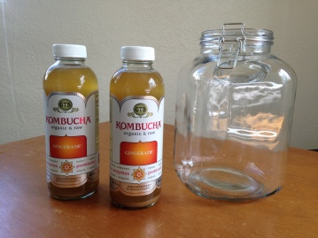 Kombucha Starter 1 NoFarmNeeded
