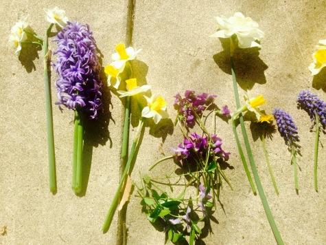 Spring Flowers NoFarmNeeded