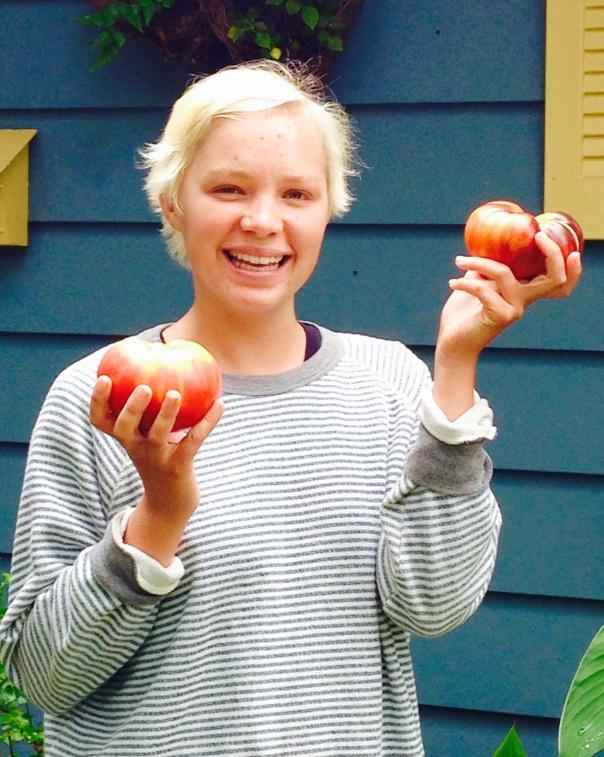 Tomatoes NoFarmNeeded