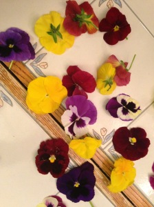 Pansies NoFarmNeeded