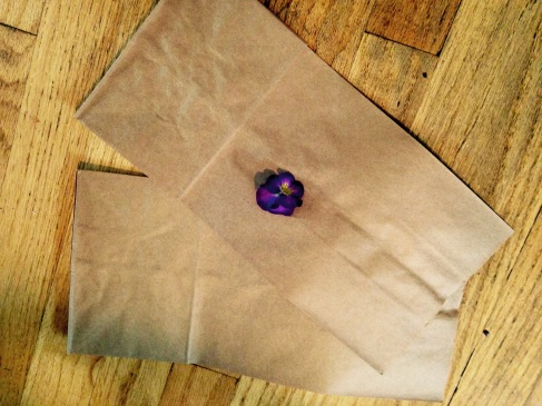 Parchment Paper NoFarmNeeded