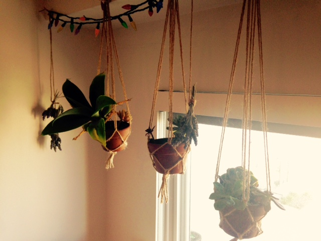 Hanging Macrame NoFarmNeeded